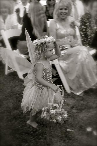 fairy wings for flowergirl