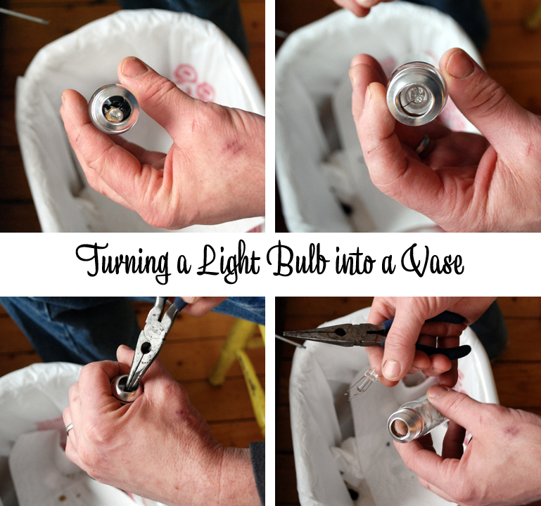 Diy Project Light Bulb Bud Vase Perfect For Table Decor Or Hanging